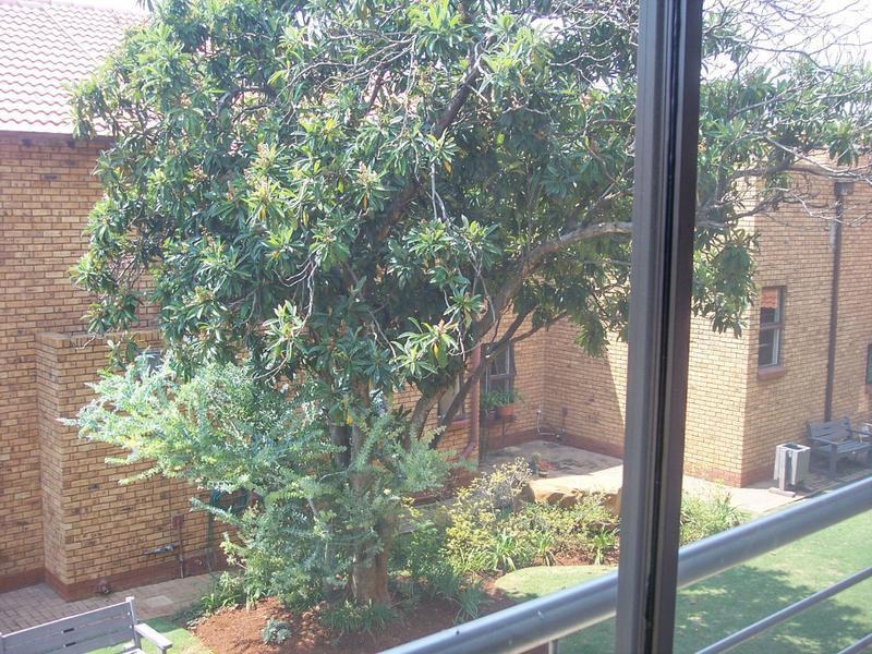 Property For Rent in Willow Park, Pretoria 12